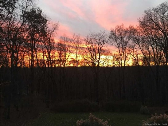 41 Deer Pond Woods, Bridgewater, CT - USA (photo 3)