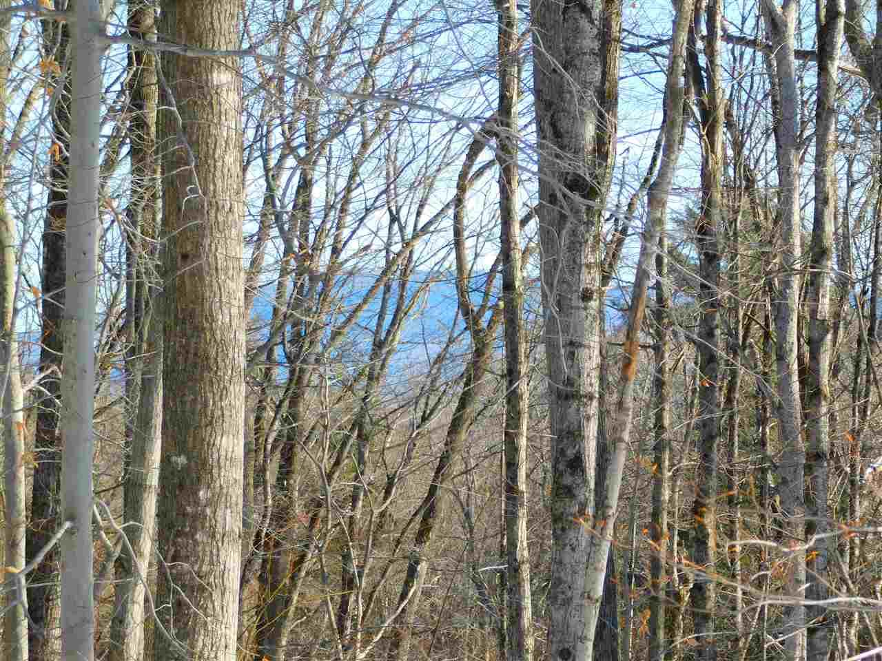 45 Little Brook Road, Winhall, VT - USA (photo 2)