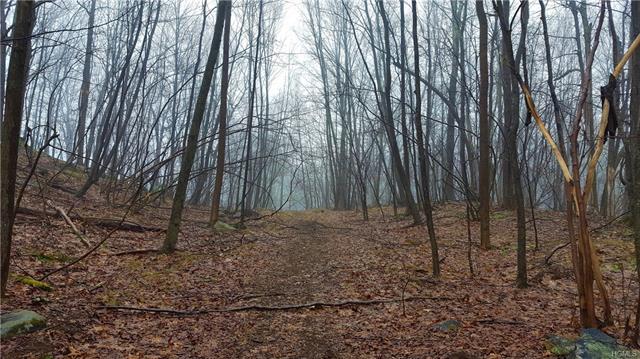 Wilkenson Hollow Road, Pawling, NY - USA (photo 2)