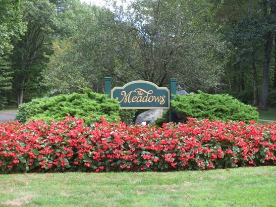 313 The Meadows 313, Enfield, CT - USA (photo 1)