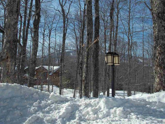 Lots 5&6 Forest Farms Road Lots 5 & 6, Winhall, VT - USA (photo 3)