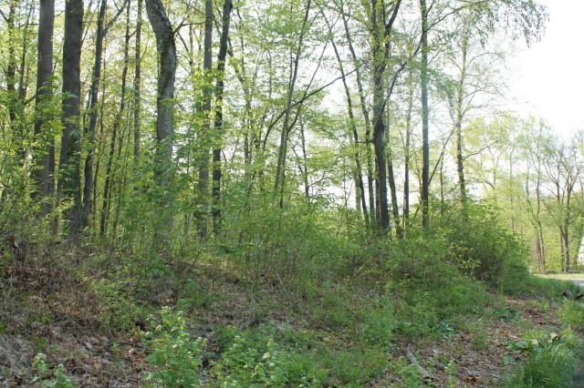 44 Deer Run Road, Brookfield, CT - USA (photo 1)