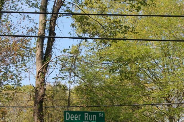 44 Deer Run Road, Brookfield, CT - USA (photo 5)