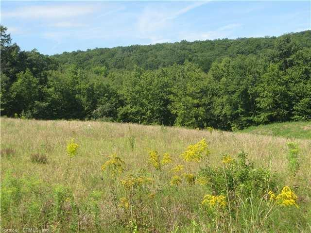 115 (lot 27) Kongscut Valley Trail, Glastonbury, CT - USA (photo 5)