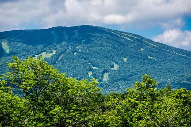 314 Trager Road, Jamaica, VT - USA (photo 3)