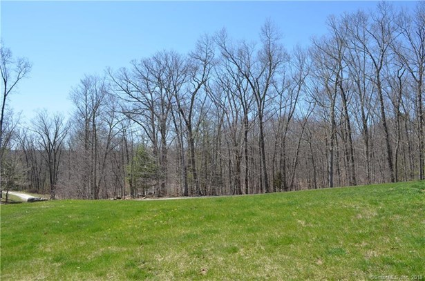 28 Deer Woods Drive, New Milford, CT - USA (photo 2)