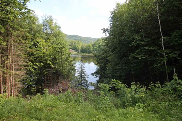 2615 Dog Pond Road, Woodbury, VT - USA (photo 4)