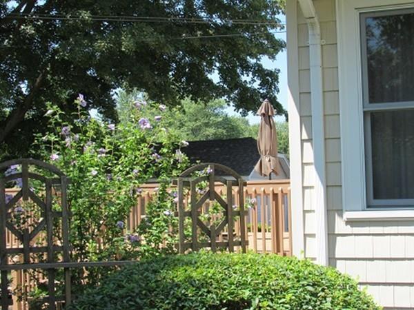 126 Lathrop St., South Hadley, MA - USA (photo 3)