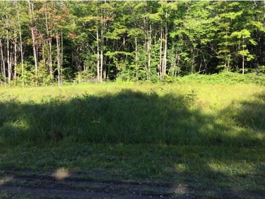 Lot 7 Deerfield Hills Road, Morristown, VT - USA (photo 2)