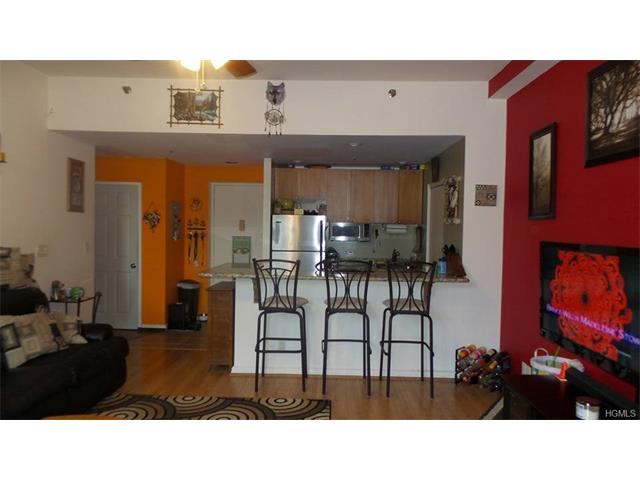 1404 Villa At The Woods, Peekskill, NY - USA (photo 4)