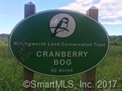 00 Pond Meadow Road, Killingworth, CT - USA (photo 1)
