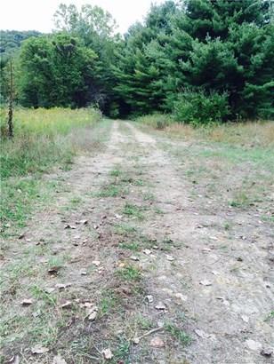 1 Timothy Lane, New Milford, CT - USA (photo 3)