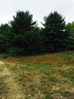 1 Timothy Lane, New Milford, CT - USA (photo 4)