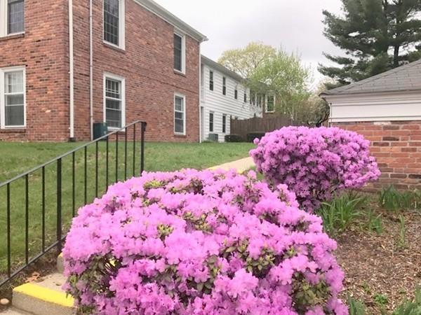 40 Yorktown Drive B, Springfield, MA - USA (photo 2)