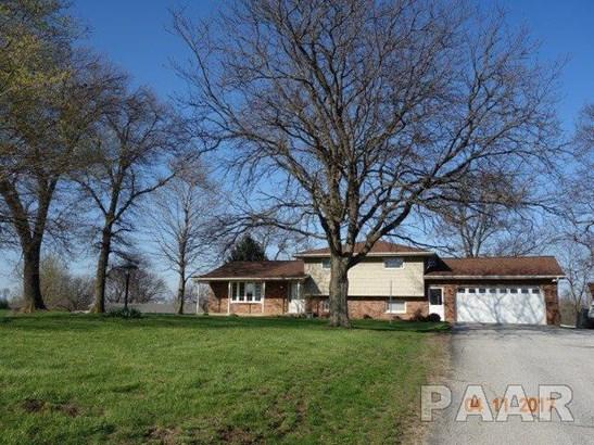 Tri-Level/3-Level, Single Family - Farmington, IL (photo 1)