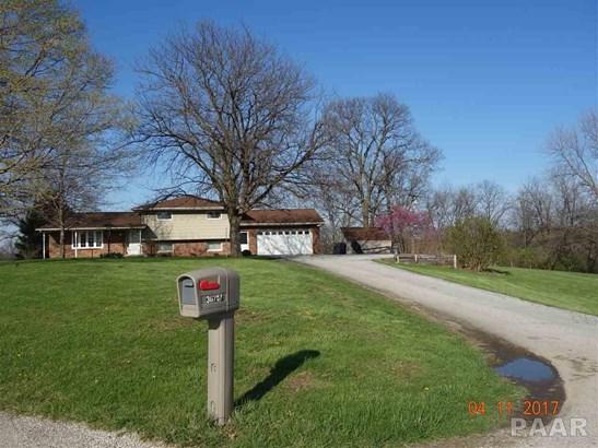 Tri-Level/3-Level, Single Family - Farmington, IL (photo 2)
