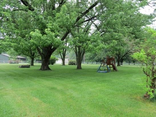 Ranch, Single Family - Edwards, IL (photo 5)