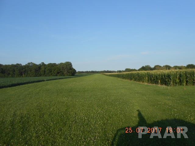 Farms - LACON, IL (photo 3)