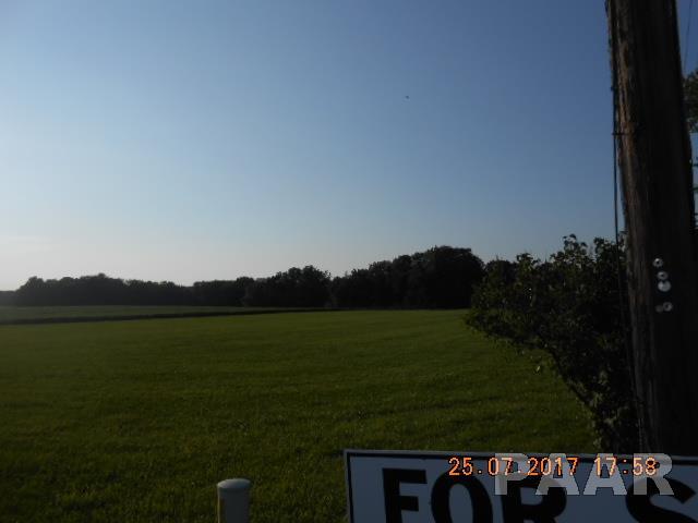 Farms - LACON, IL (photo 4)