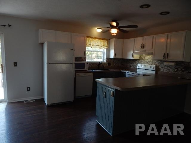 Ranch, Single Family - DEER CREEK, IL (photo 4)