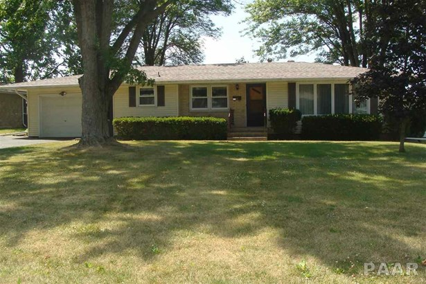 Raised Ranch, Single Family - FARMINGTON, IL (photo 1)