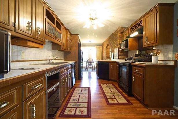 Single Family, Quad-Level/4-Level - Tremont, IL (photo 5)