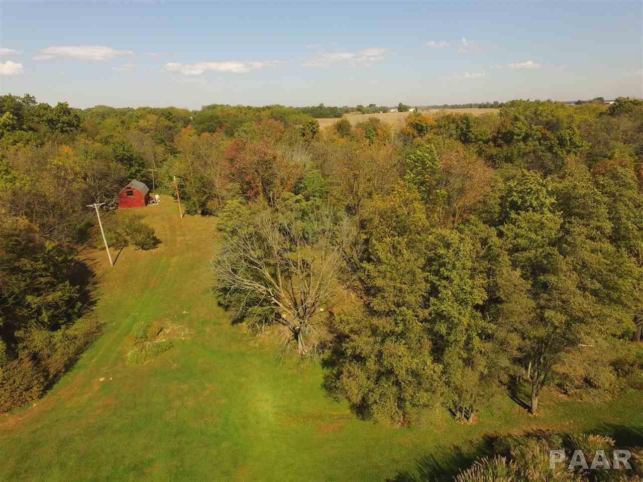 Ranch, Single Family - Astoria, IL (photo 3)