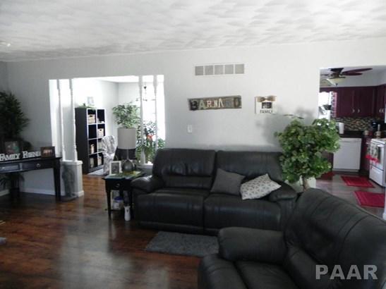 Split Foyer, Single Family - Tremont, IL (photo 5)