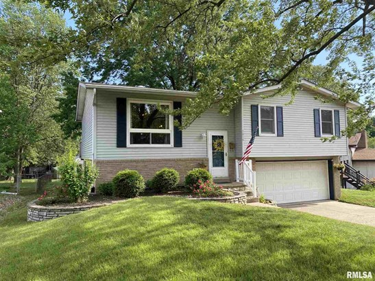 Split Foyer, Single Family - Peoria, IL