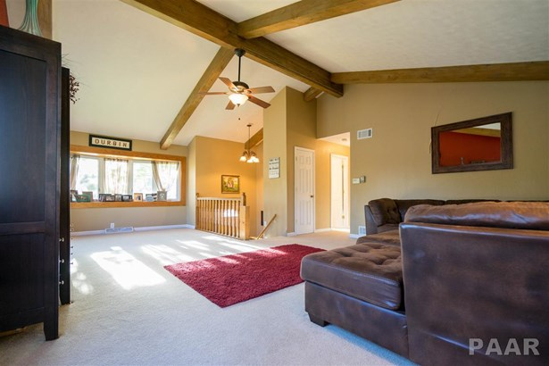 Split Foyer, Single Family - Germantown Hills, IL (photo 5)