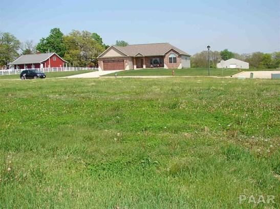 Lots - Goodfield, IL (photo 4)