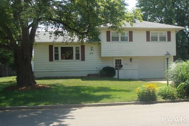 Single Family, Quad-Level/4-Level - Farmington, IL (photo 1)