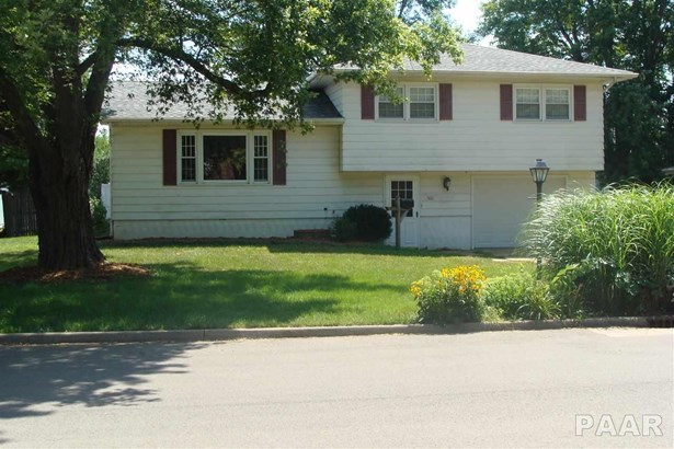 Single Family, Quad-Level/4-Level - Farmington, IL (photo 3)