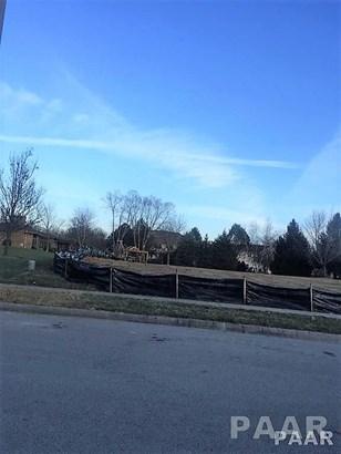 Lots - MORTON, IL (photo 2)