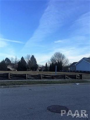 Lots - MORTON, IL (photo 3)