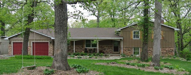 Single Family, Quad-Level/4-Level - Edelstein, IL (photo 1)