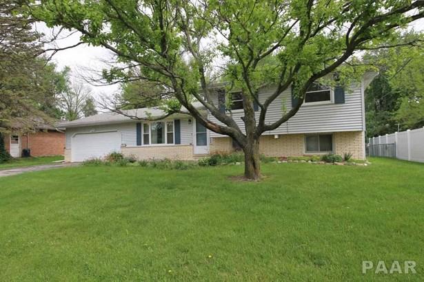 Tri-Level/3-Level, Single Family - Morton, IL (photo 4)