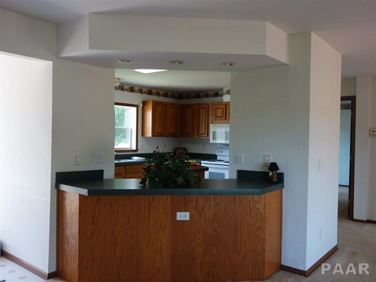 Ranch, Single Family - Farmington, IL (photo 5)