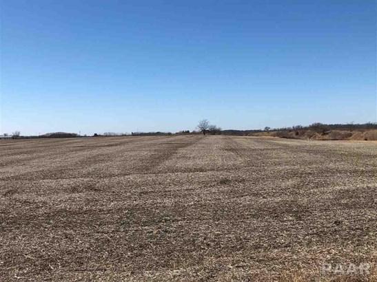 Farms - Fiatt, IL (photo 3)