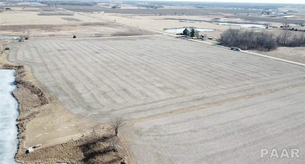 Farms - Fiatt, IL (photo 4)