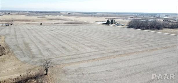 Farms - Fiatt, IL (photo 5)