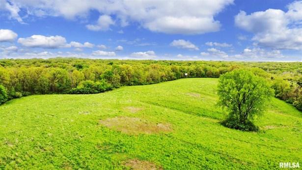 Recreational Land - Marietta, IL