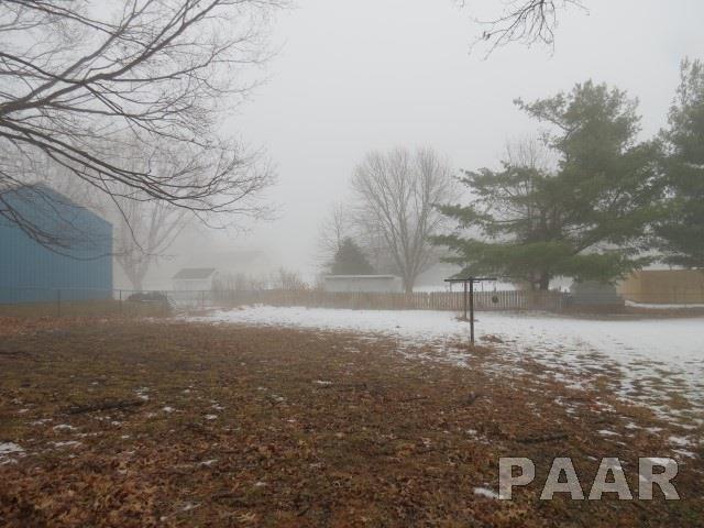 Ranch, Single Family - Chillicothe, IL (photo 5)