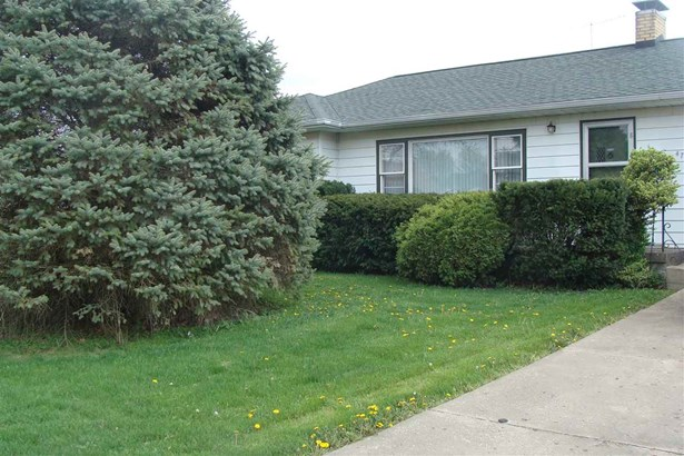 Ranch, Single Family - Farmington, IL (photo 3)