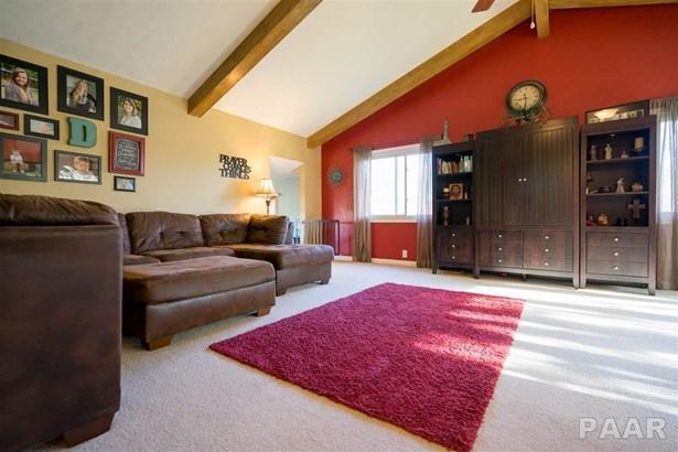Split Foyer, Single Family - Germantown Hills, IL (photo 4)