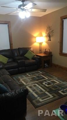 2 Story, Single Family - WYOMING, IL (photo 4)