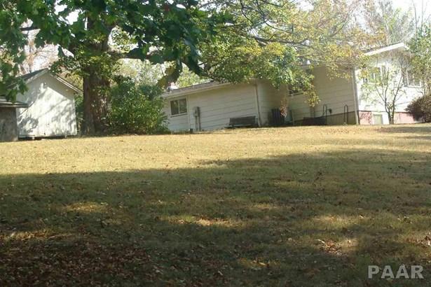 Ranch, Single Family - Farmington, IL (photo 2)