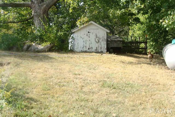 Ranch, Single Family - Farmington, IL (photo 3)
