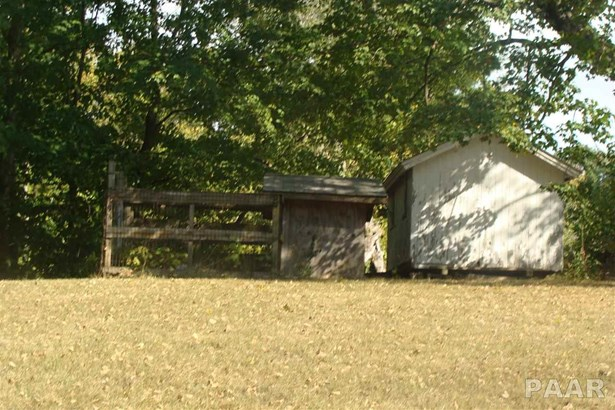 Ranch, Single Family - Farmington, IL (photo 4)