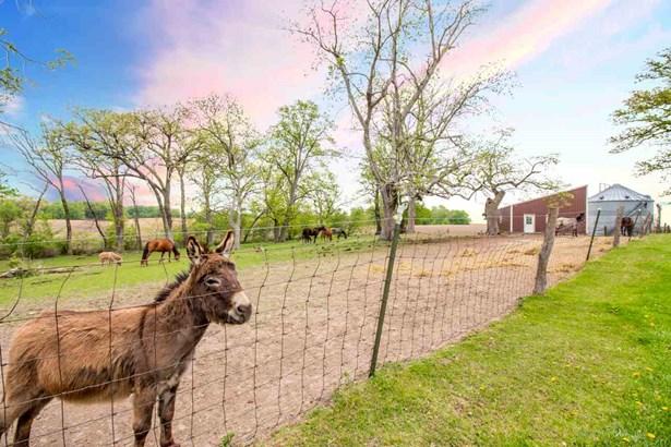 Farms - Lacon, IL (photo 2)